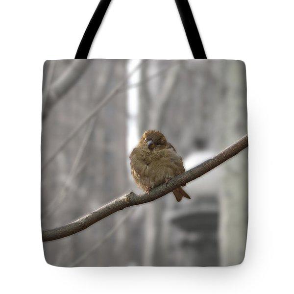 Bryant Park Bird Nyc Tote Bag by Henri Irizarri