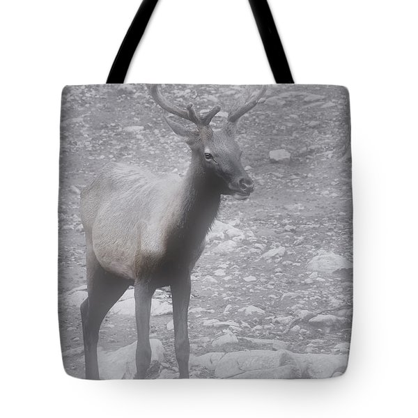 Buck in Fog on Hurricane Ridge - Olympic National Forest - Olympic National Park WA Tote Bag by Christine Till