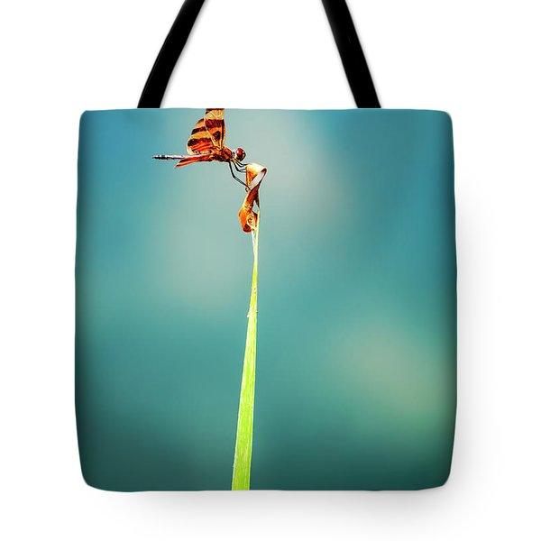 Bug Olympics Xvii Tote Bag by Charles Dobbs