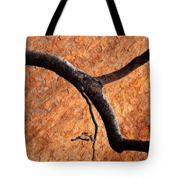 Burnt Orange Tote Bag by Mike  Dawson