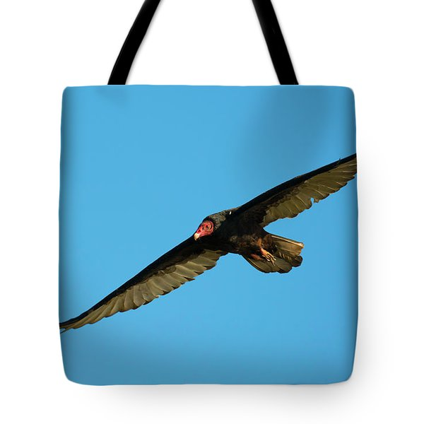 Buzzard Circling Tote Bag by Mike Dawson