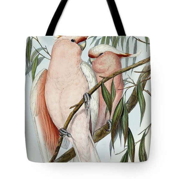 Cacatua Leadbeateri Tote Bag by John Gould