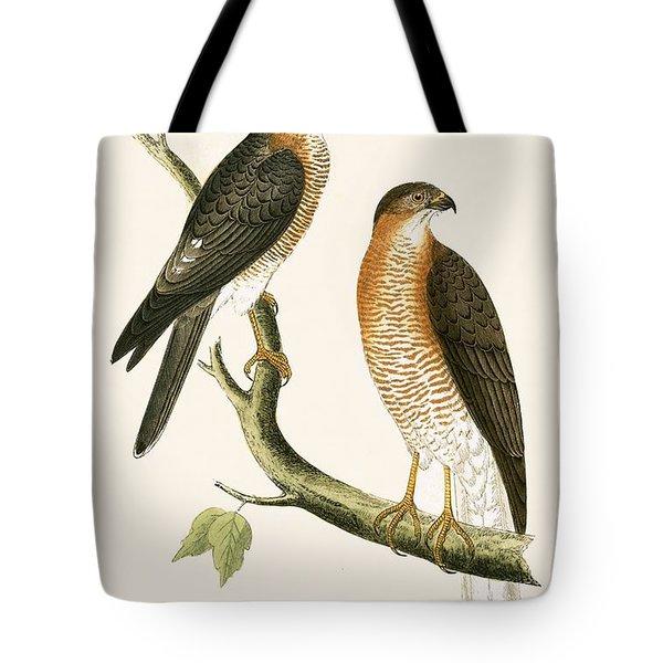 Calcutta Sparrow Hawk Tote Bag by English School