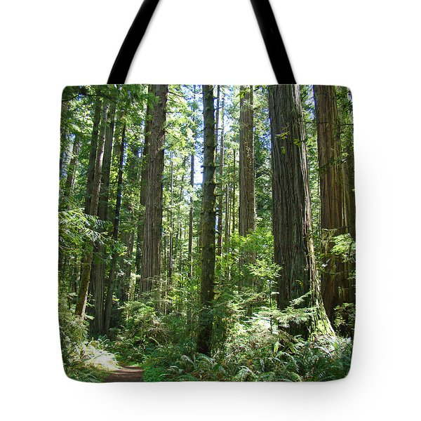 California Redwood Trees Forest art prints Tote Bag by Baslee Troutman