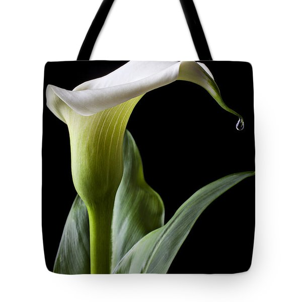 Calla lily with drip Tote Bag by Garry Gay