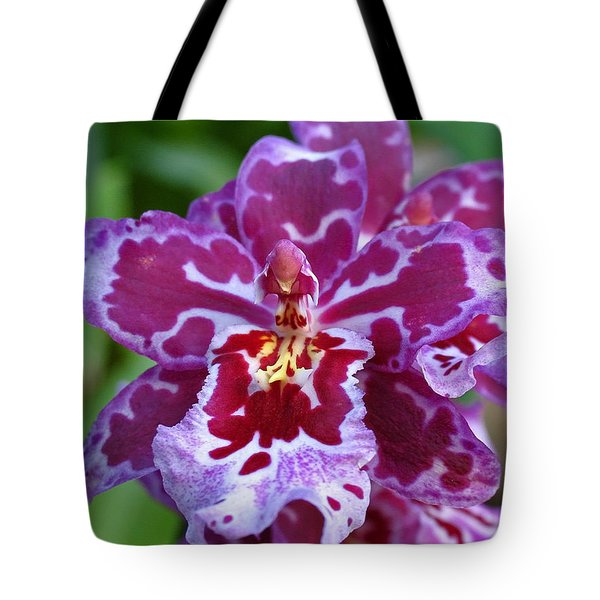 Cambria Orchid Tote Bag by Juergen Roth