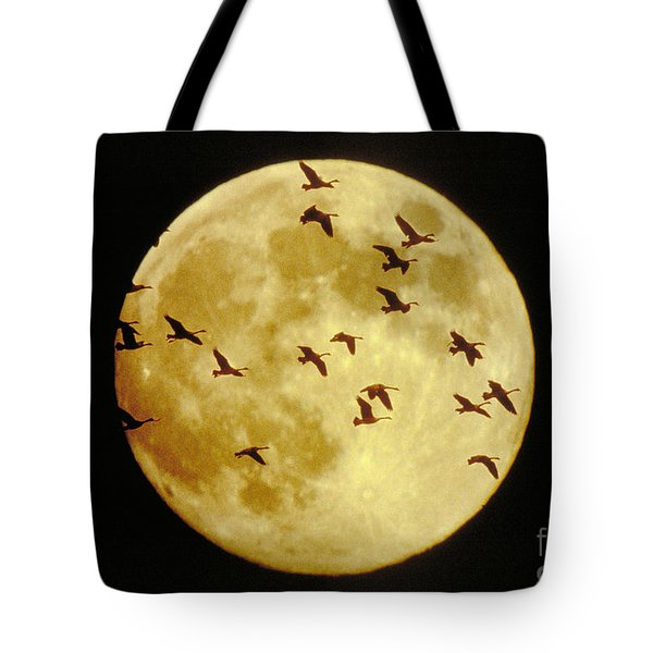 Canda Geese And Moon Tote Bag by Kenneth Fink and Photo Researchers