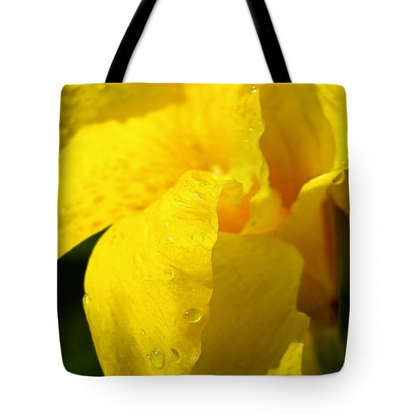 Canna At Sunrise Tote Bag by Todd A Blanchard