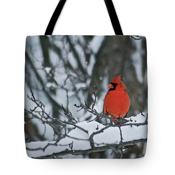 Cardinal and snow Tote Bag by Michael Peychich