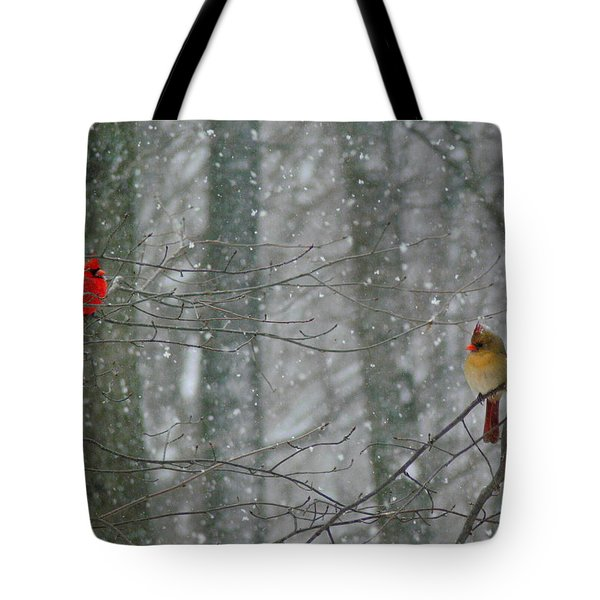 Cardinals in Snow Tote Bag by Serina Wells