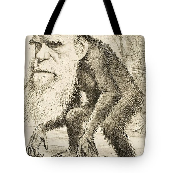 Caricature Of Charles Darwin Tote Bag by English School