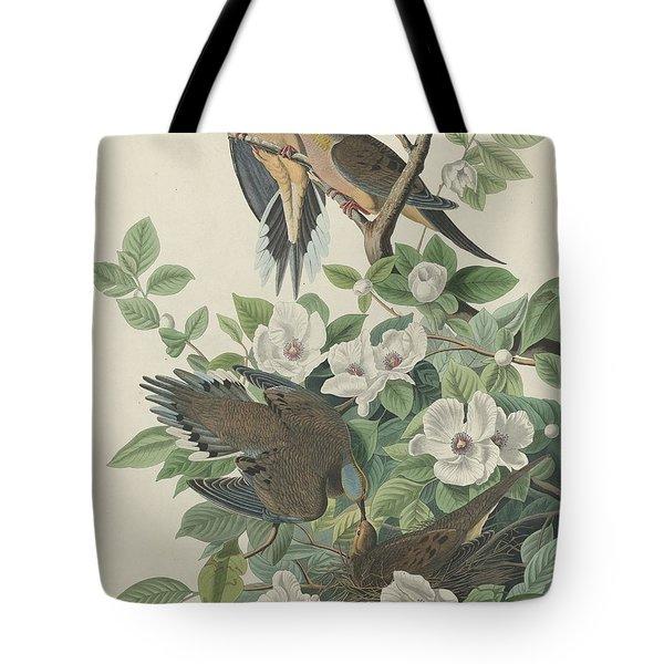 Carolina Pigeon Or Turtle Dove Tote Bag by John James Audubon
