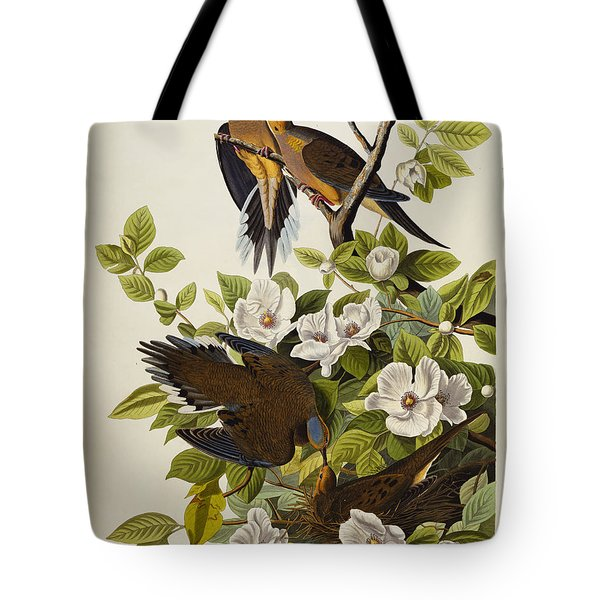 Carolina Turtledove Tote Bag by John James Audubon