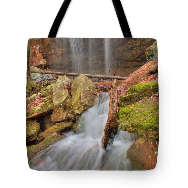 Cascading Waterfall Tote Bag by Douglas Barnett