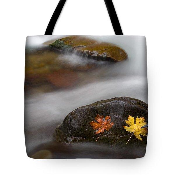 Castaways Tote Bag by Mike  Dawson