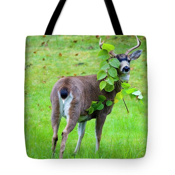 Caught in the Act Tote Bag by Mike  Dawson