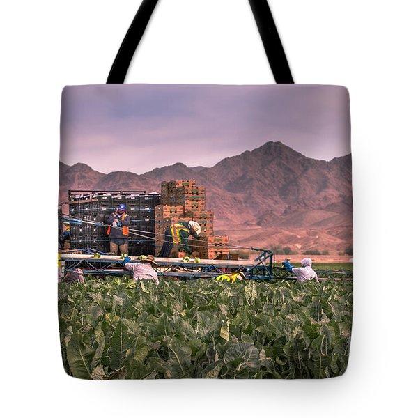 Cauliflower Harvest Tote Bag by Robert Bales