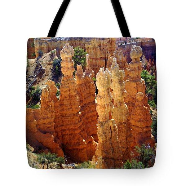 Cedar Breaks 1 Tote Bag by Marty Koch