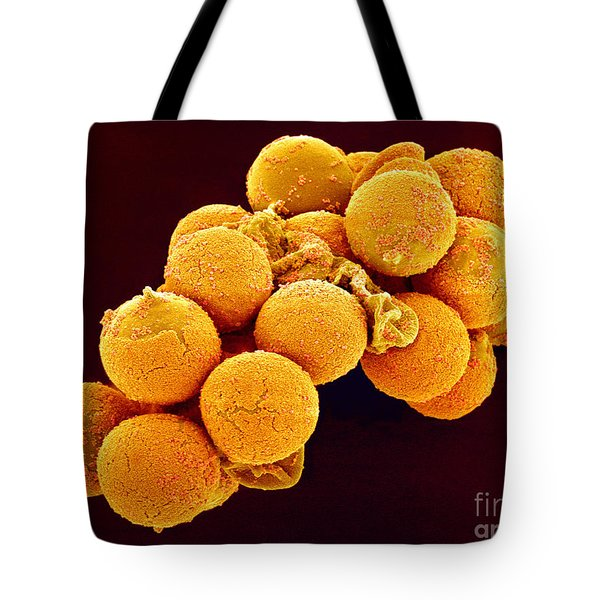 Cedar Pollen SEM Tote Bag by Susumu Nishinaga and SPL and Photo Researchers