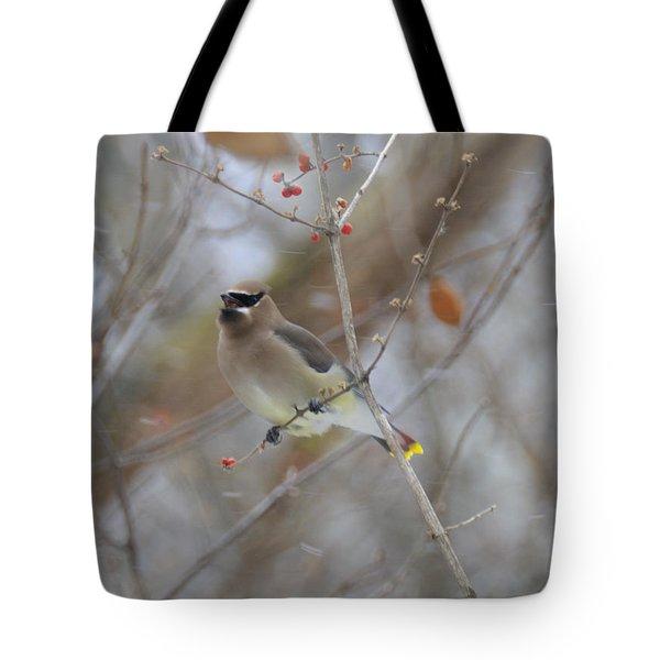 Cedar Wax Wing 2 Tote Bag by David Arment