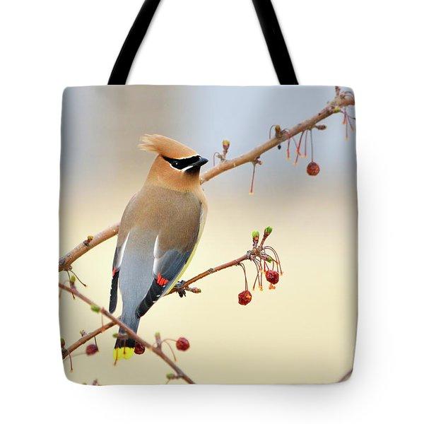 Cedar Waxwing Tote Bag by Betty LaRue