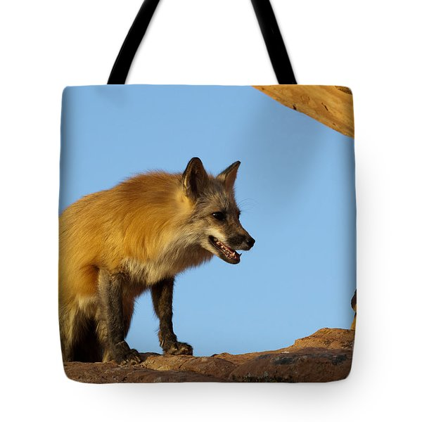 Checking My Shadow Tote Bag by Sandra Bronstein