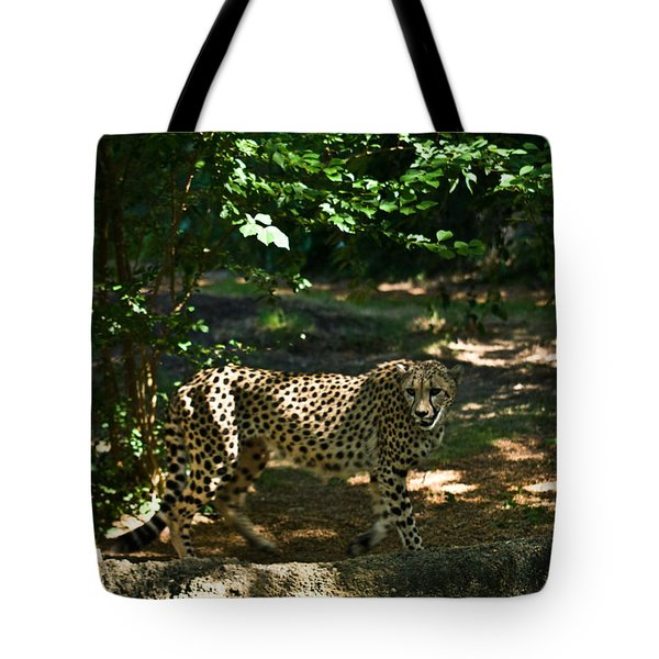Cheetah On The In The Forest 2 Tote Bag by Douglas Barnett