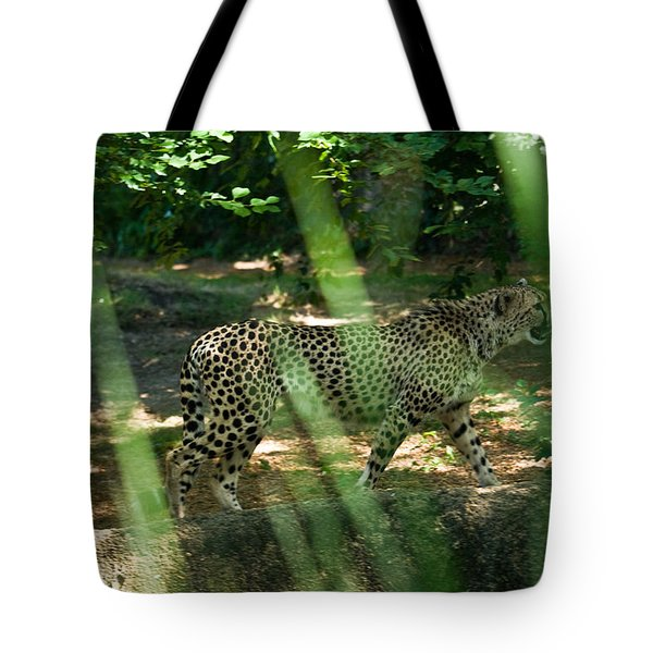 Cheetah on the in the Forest Tote Bag by Douglas Barnett