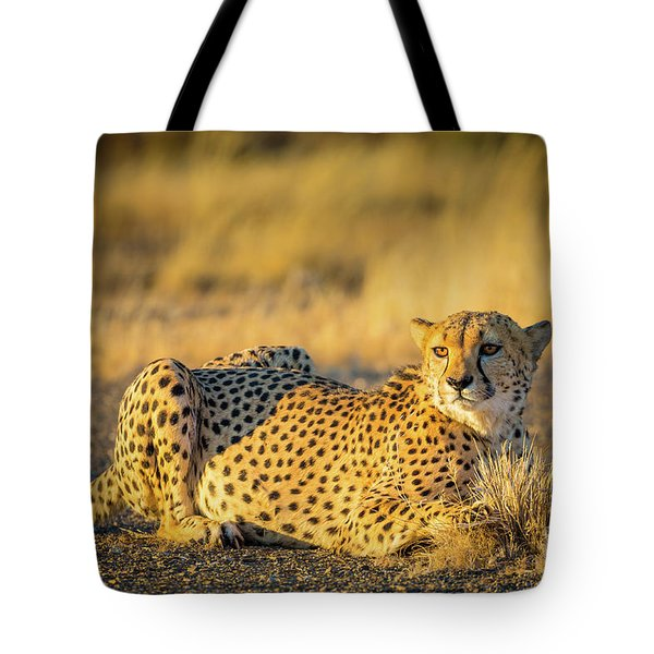 Cheetah Portrait Tote Bag by Inge Johnsson