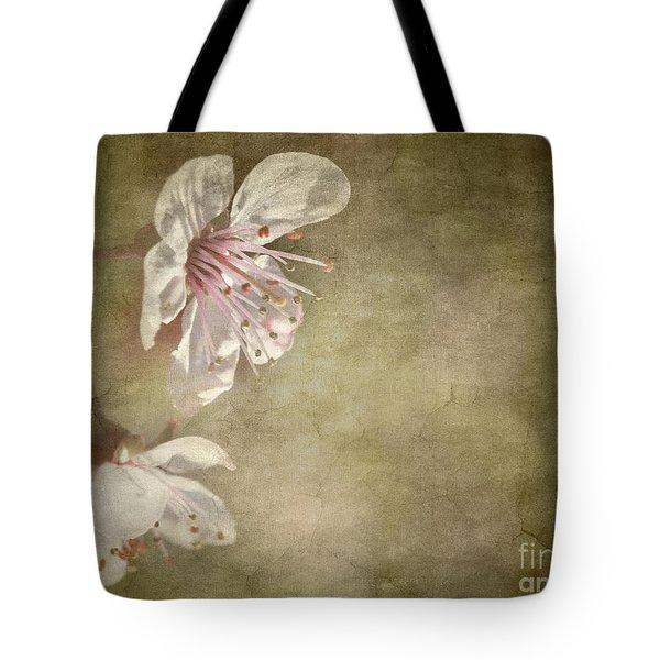 cherry blossom Tote Bag by Meirion Matthias
