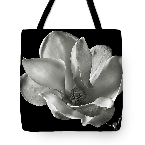 Chinese Magnolia Tote Bag by Endre Balogh