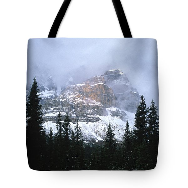 Clearing Storm Tote Bag by Sandra Bronstein
