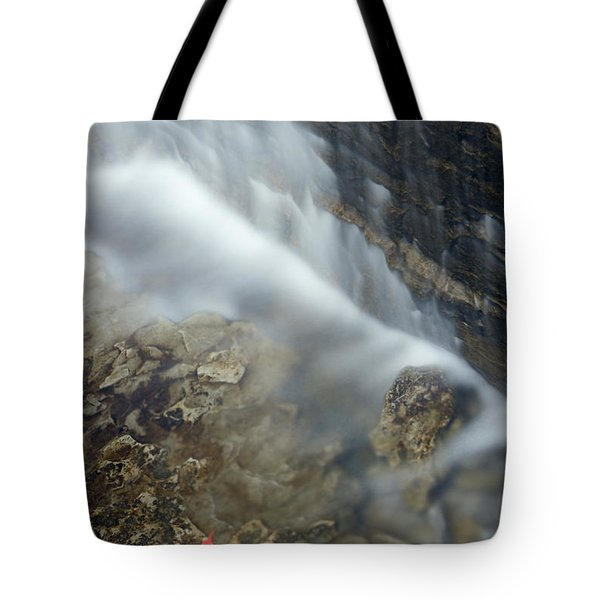 Closeup Maple Leaf And Decew Falls, St Tote Bag by Darwin Wiggett