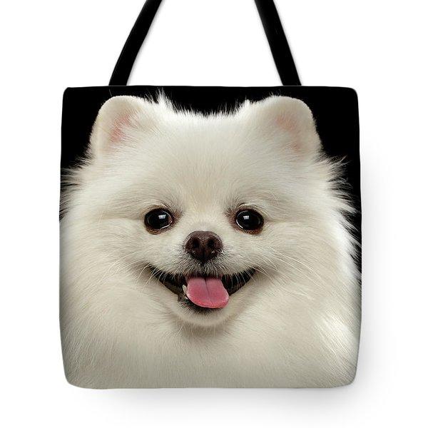 Closeup Portrait Of  White Spitz Dog On Black  Tote Bag by Sergey Taran