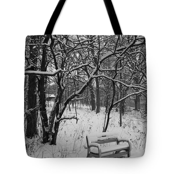 Cold Seat Tote Bag by Lauri Novak
