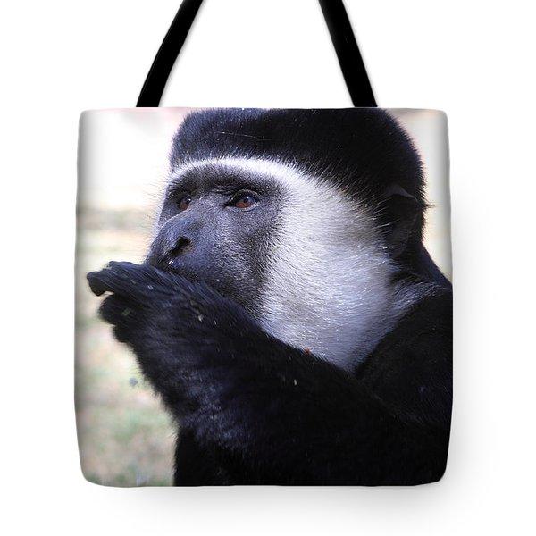 Colobus Monkey Tote Bag by Aidan Moran