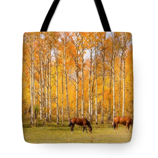 Colorful Autumn High Country Landscape Tote Bag by James BO  Insogna
