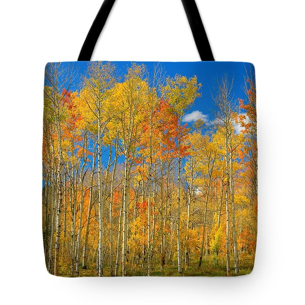 Colorful Colorado Autumn Landscape Tote Bag by James BO  Insogna