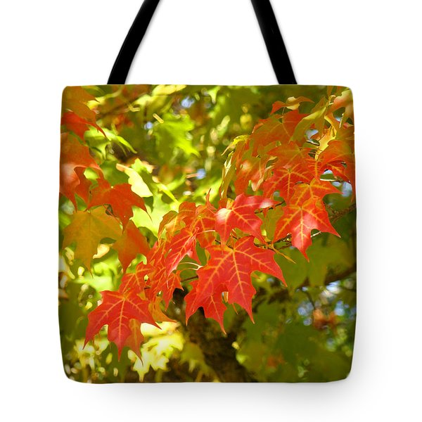 Colorful Fall Leaves Red Nature Landscape Baslee Troutman Tote Bag by Baslee Troutman