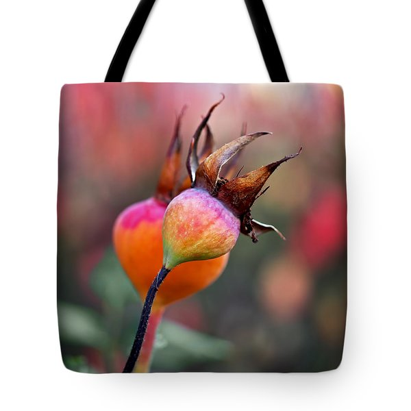 Colorful Rose Hips Tote Bag by Rona Black