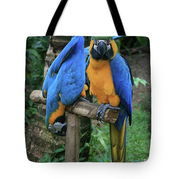 Colourful Macaw Pohakumoa Maui Hawaii Tote Bag by Sharon Mau