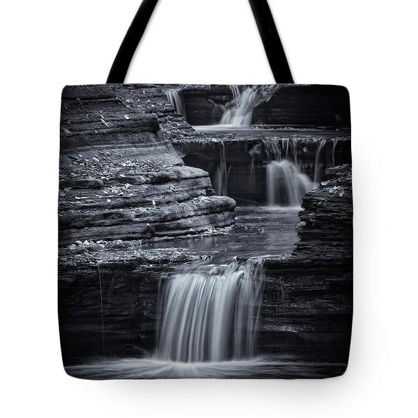 Coming Down Gently Tote Bag by Evelina Kremsdorf