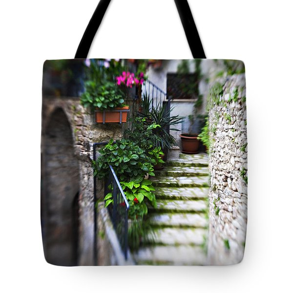 Coming Home Tote Bag by Marilyn Hunt