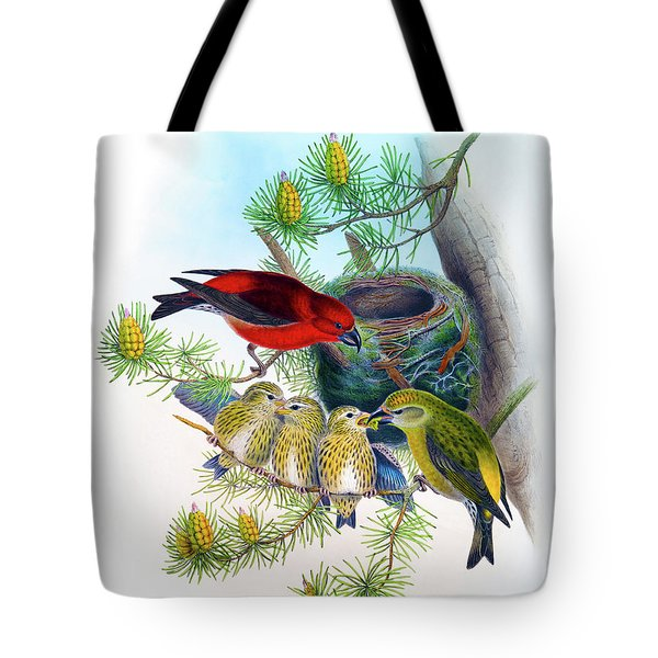 Common Crossbill Antique Bird Print John Gould Hc Richter Birds Of Great Britain  Tote Bag by Orchard Arts
