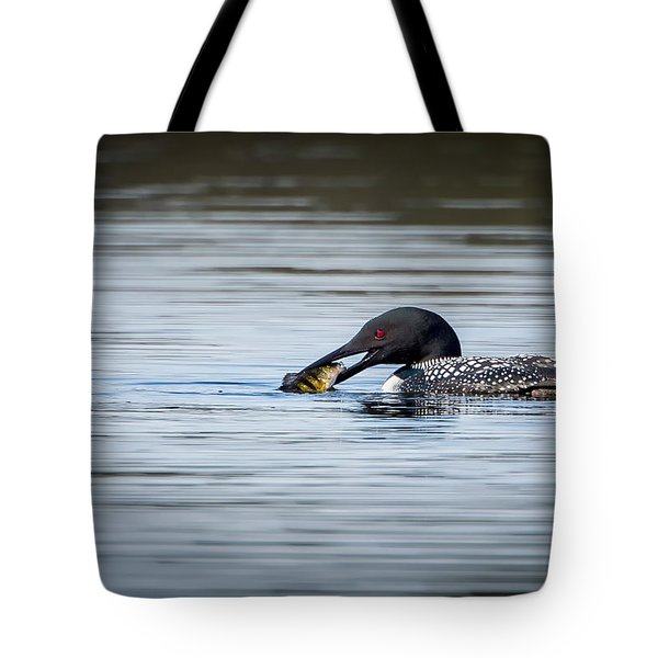Common Loon Tote Bag by Bill Wakeley
