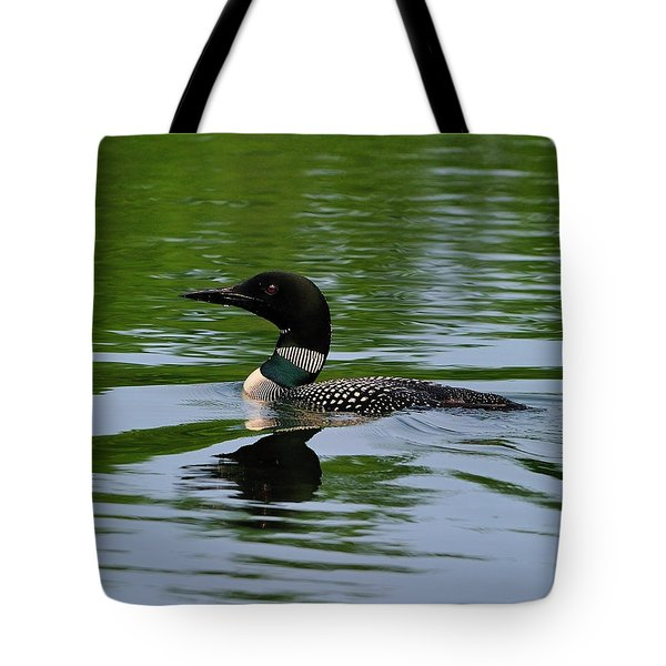 Common Loon Tote Bag by Tony Beck