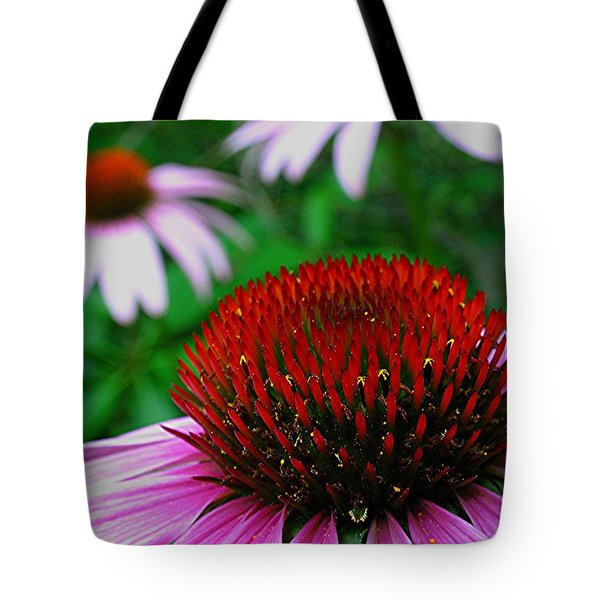 Coneflowers Tote Bag by Juergen Roth