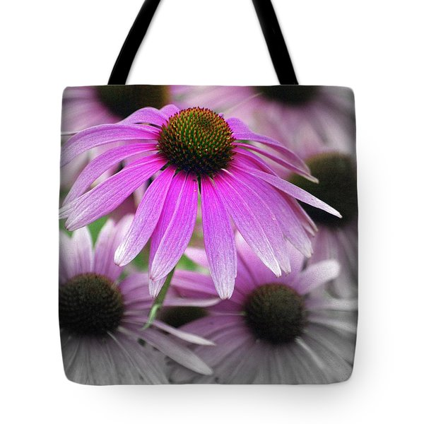 Coneflowers Tote Bag by Marty Koch