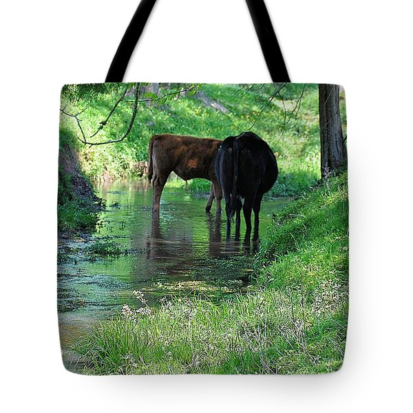 Cooling Spring Tote Bag by Jan Amiss Photography
