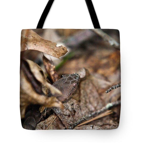 Copperhead 3 Tote Bag by Douglas Barnett